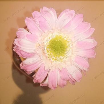Гербера розовая маленькая